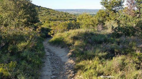 Un chemin de randonnée dans les collines de Sernhac