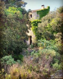 Un mazet au milieu de la garrigue - dans le Gard