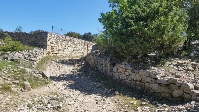 Des restanques sur le site du camp de césar à Laudun
