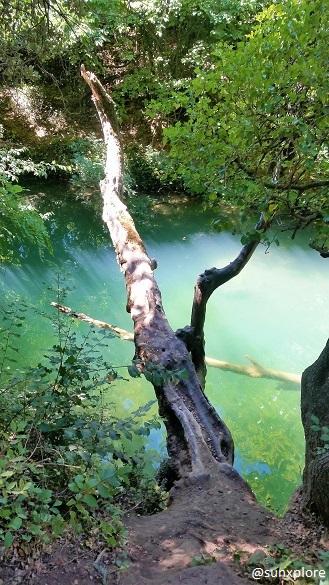 La Bresque, une rivière qui prend sa source à proximité de la cascade de sillans dans le Var