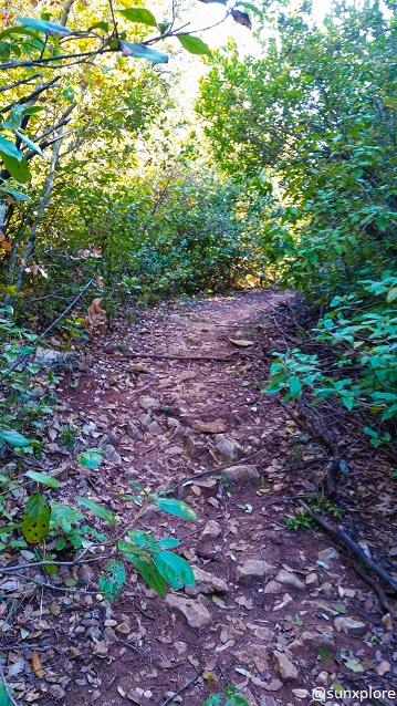Un chemin de promenade dans le Gard