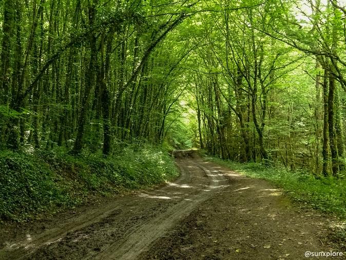 Une randonnée insolite dans le Vercors