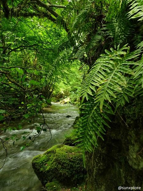 Le Vernaison, cette rivière coule en direction de la cascade verte et de Pont-en-Royans