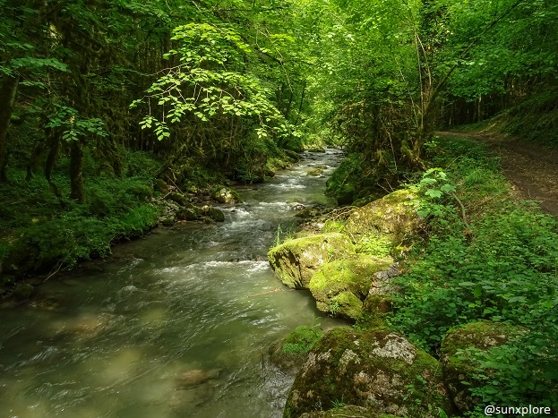 Dans la Drôme, le chemin de randonnée qui mène à la cascade verte est longé par le Vernaison