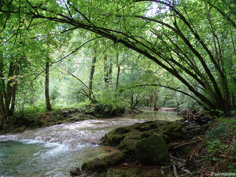 Une randonnée à Arbois dans le Jura le long de la Cuisance en direction de la cascade des tufs